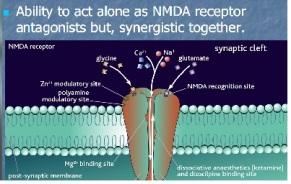mechanism NMDA antagonis